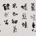 Tang Dynasty Poem (138x70cm)